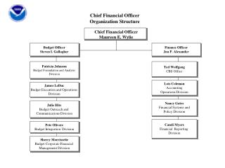 Chief Financial Officer Organization Structure