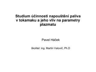 Studium účinnosti napouštění paliva vtokamaku a jeho vliv na parametry plazmatu