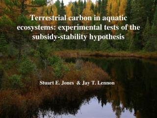 Terrestrial carbon in aquatic ecosystems: experimental tests of the subsidy-stability hypothesis