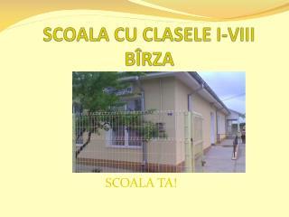 SCOALA CU CLASELE I-VIII B ÎRZA