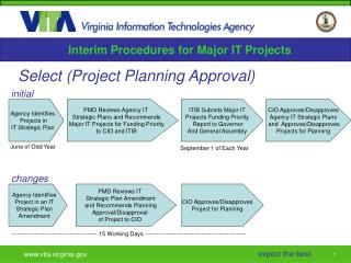 Interim Procedures for Major IT Projects