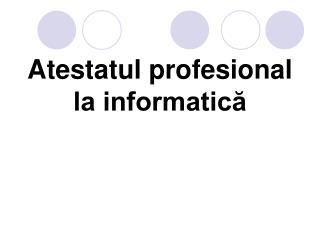 Atestatul profesional la informatică