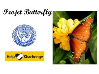 Projet Butterfly