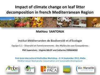 Impact of  climate  change on  leaf  litter  decomposition in french Mediterranean  Region