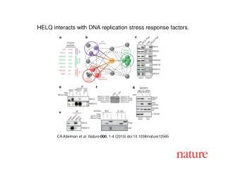 CA Adelman  et al.  Nature  000 ,  1 - 4  (2013) doi:10.1038/nature 12565