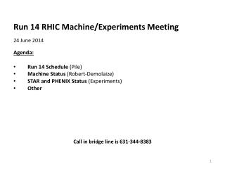 Run  14  RHIC Machine/Experiments  Meeting 24 June 2014   Agenda : Run 14 Schedule  (Pile)