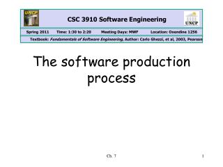 The software production process