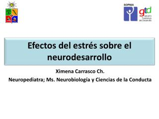 Efectos del estrés sobre el  neurodesarrollo