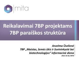 Reikalavimai 7BP projektams 7BP paraiškos struktūra