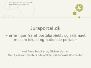 � erfaringer fra et portalprojekt, og skismaet mellem lokale og nationale portaler