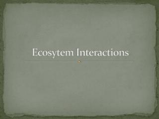 Ecosytem  Interactions