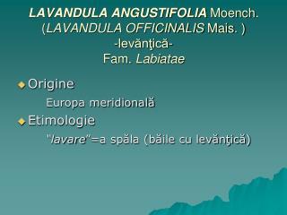 LAVANDULA ANGUSTIFOLIA Moench . ( LAVANDULA OFFICINALIS  Mais . ) -levănţică- Fam.  Labiatae