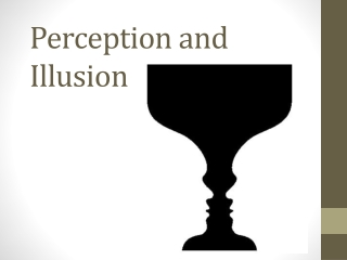 Perception and Illusion
