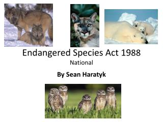 Endangered Species Act 19 88 National