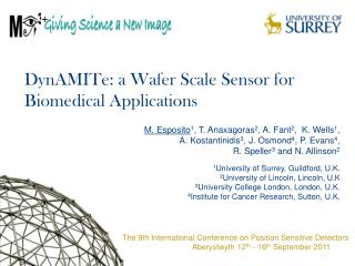 DynAMITe: a Wafer Scale Sensor for Biomedical Applications