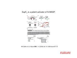 NA Sallee et al. Nature 000 , 1-4 (2008) doi:10.1038/nature07170