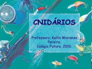 CNIDÁRIOS Professora: Kellin Mioranza Pereira. Colégio Futura, 2010.
