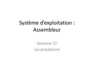 Système d'exploitation : Assembleur