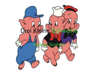Drei Kleine  Schweine