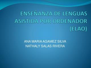 ENSE�ANZA DE LENGUAS ASISTIDA POR ORDENADOR (ELAO)