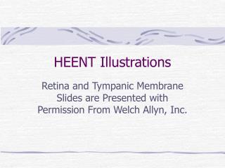 HEENT Illustrations