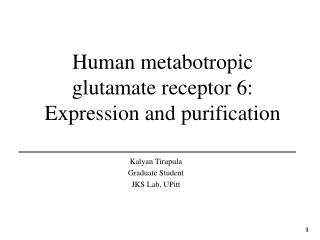 Human metabotropic glutamate receptor 6: Expression and purification