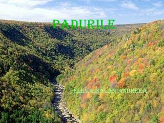 PADURILE