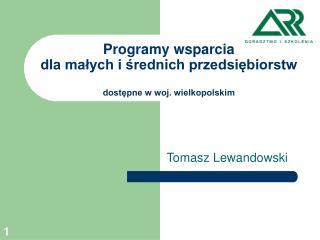 Programy wsparcia  dla małych i średnich przedsiębiorstw dostępne w woj. wielkopolskim