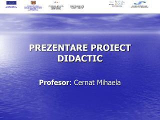 PREZENTARE PROIECT DIDACTIC Profesor : Cernat Mihaela