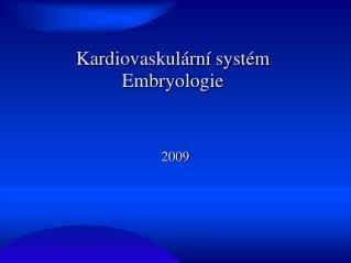 Kardiovaskulární systém Embryologie