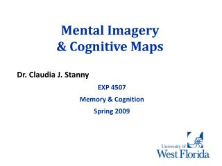 Mental Imagery   Cognitive Maps