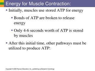 Energy for Muscle Contraction: