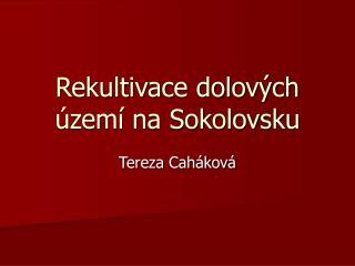 Rekultivace dolov�ch �zem� na Sokolovsku