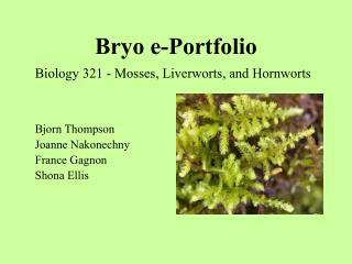 Bryo e-Portfolio