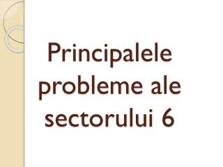 P rincipalele probleme  ale  sectorului  6