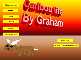 Caribou life By Graham