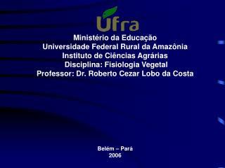 Ministério da Educação Universidade Federal Rural da Amazônia Instituto de Ciências Agrárias