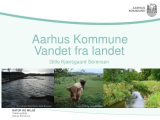 Aarhus Kommune