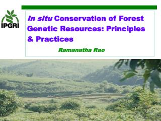 In situ Conservation of Forest Genetic Resources: Principles  Practices              Ramanatha Rao