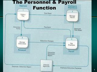 The Personnel & Payroll Function