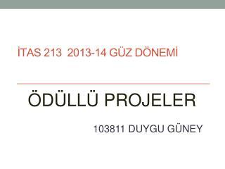 İTAS 213  2013-14 GÜZ DÖNEMİ