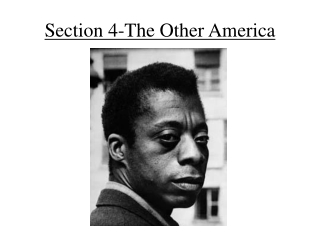 Chapter 19 Section 4 The Other America