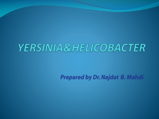 Pathogenesis of H Pylori Infection