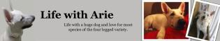 Life with  Arie