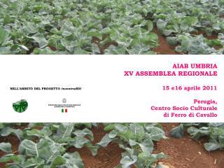 AIAB UMBRIA XV ASSEMBLEA REGIONALE 15 e16 aprile 2011 Perugia,  Centro Socio Culturale