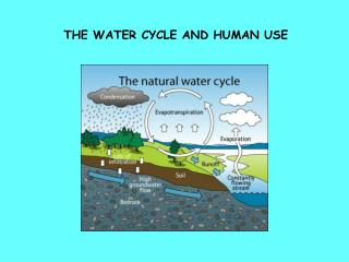 THE WATER CYCLE AND HUMAN USE