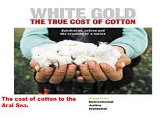 The cost of cotton to the Aral Sea.