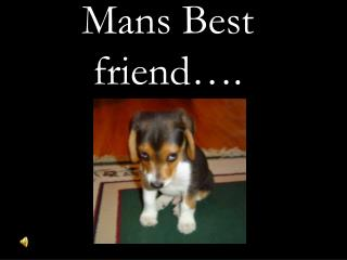 Mans Best friend….