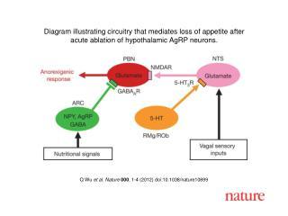 Q Wu  et al. Nature 000 ,  1 - 4  (2012) doi:10.1038/nature10899