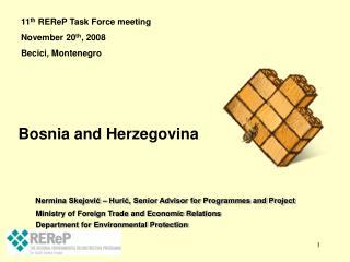 Nermina Skejović – Hurić, Senior Advisor for Programmes and Project